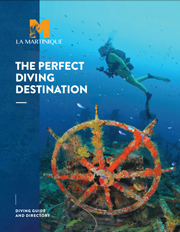 - Dive in Martinique